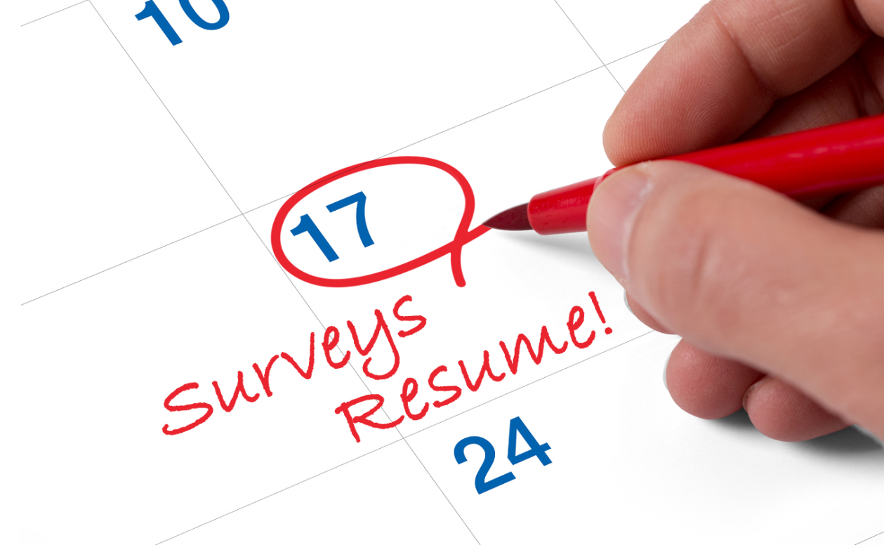 Surveys Resume